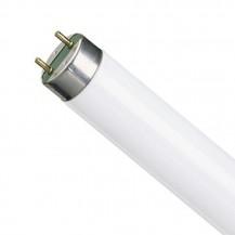 Лампа люминесцентная L18W / 54-765 G13
